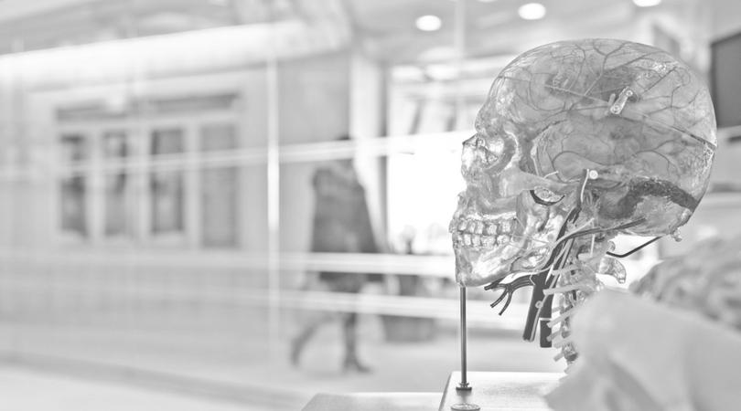 Neuroplasticidad o la capacidad de reprogramar nuestro cerebro