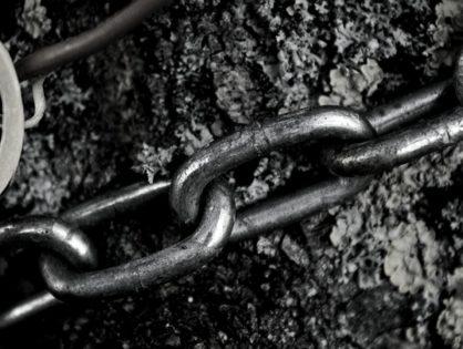 Las cadenas del árbol son el destino